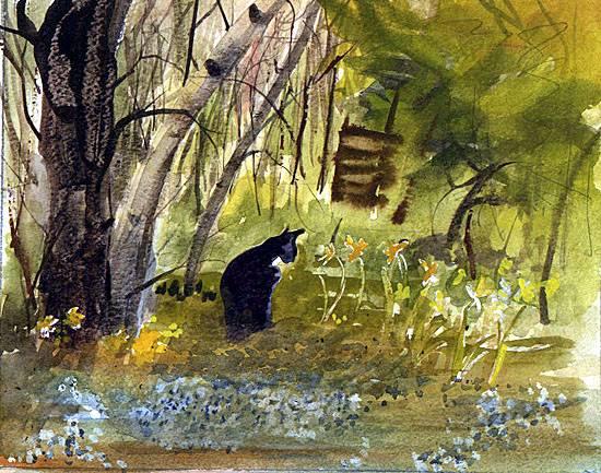 cat-in-the-woods