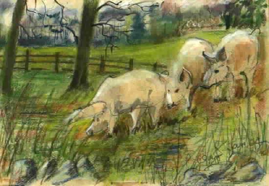 pastel-pigs