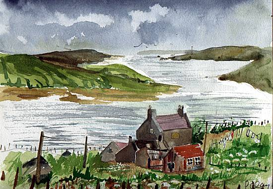 shetland-2